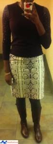 OI_jcrew_snake_no_2_skirt_loft_sweater