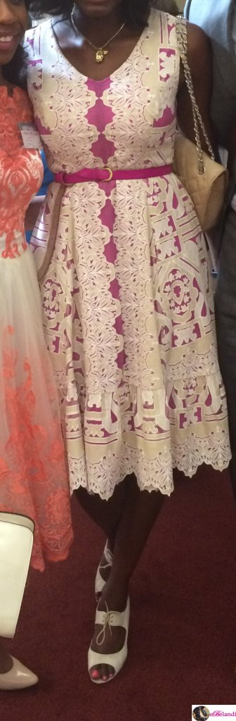 ebelandi_anthropologie_versailles_dress_review_3